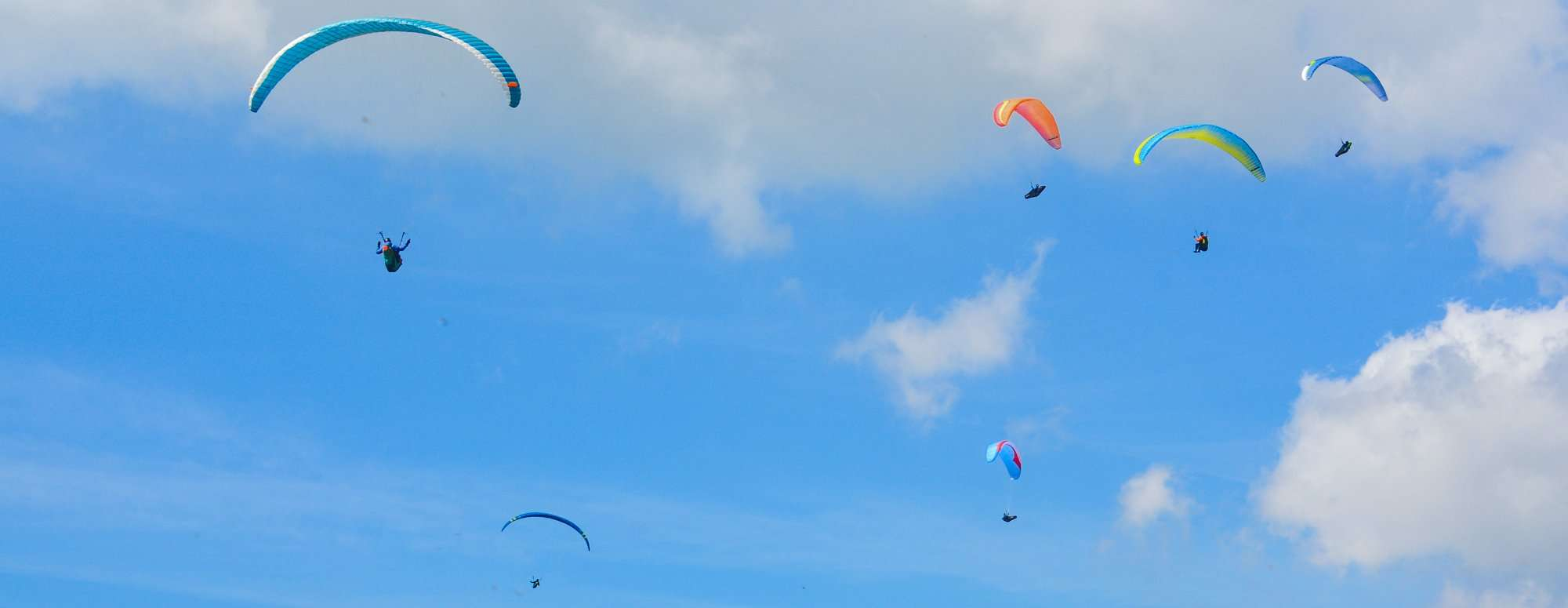 Paragliders flying high